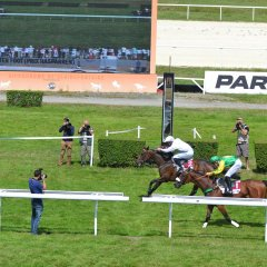 Hippodrome deDeauville Clairefontaine